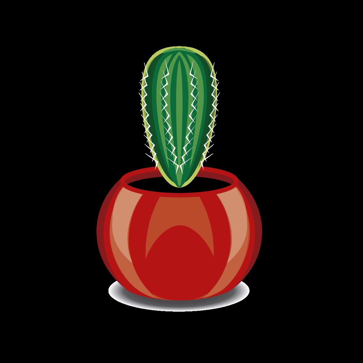 cactus01-10-11-12-13