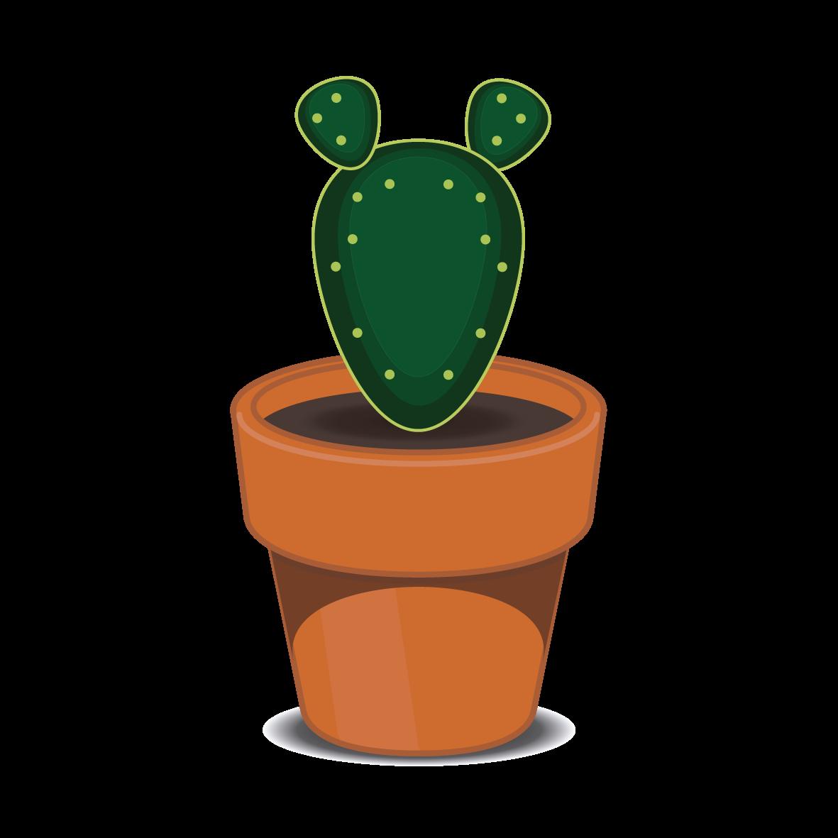 cactus01-10