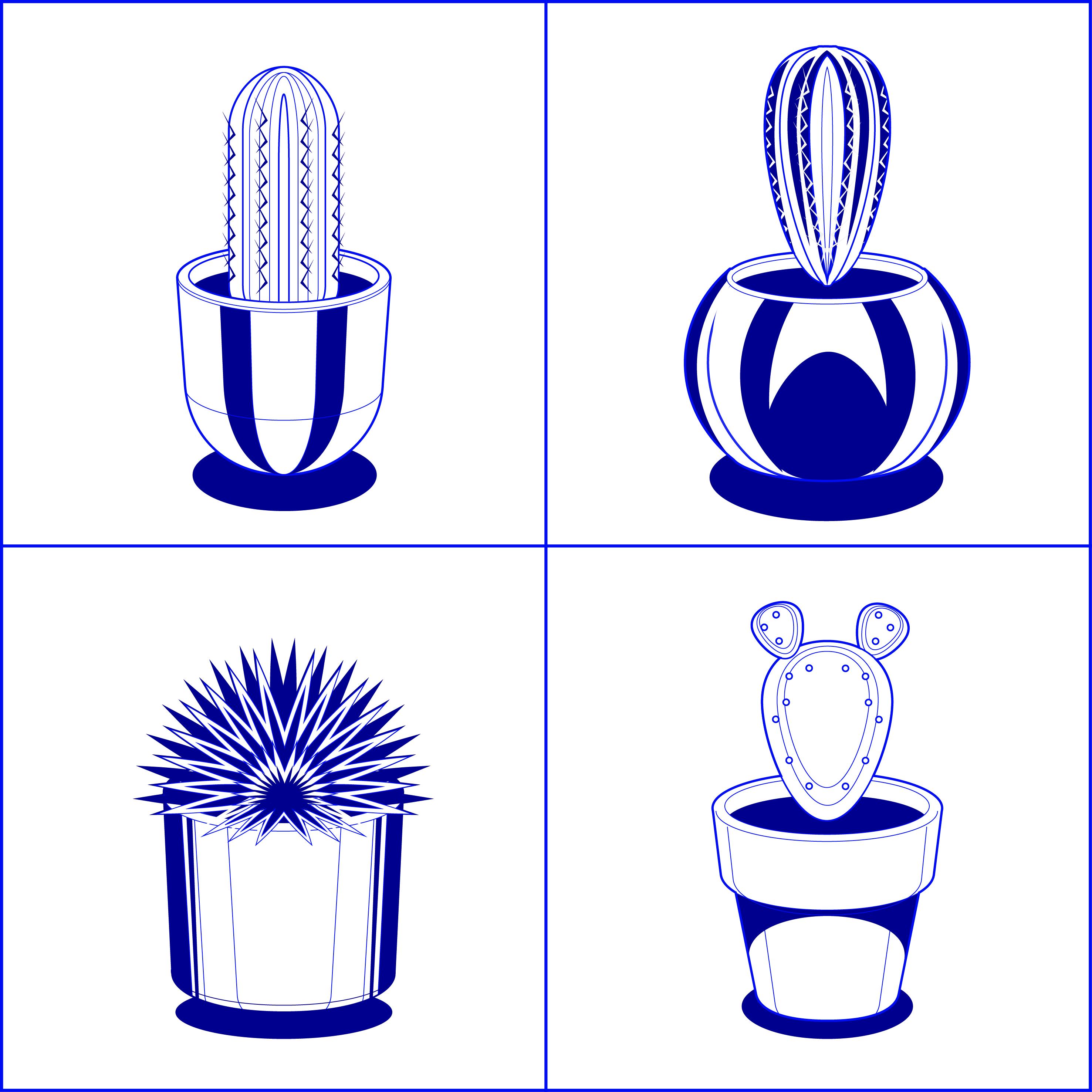 lapizero cactus